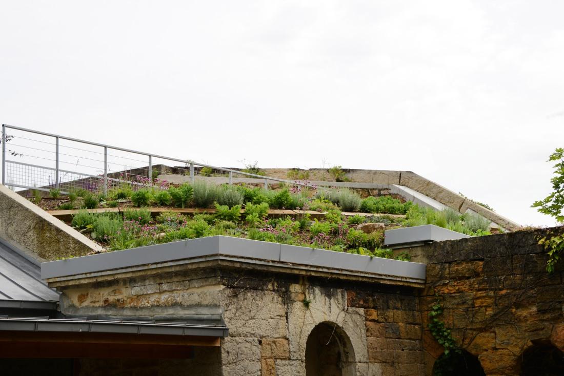 Architecte paysagiste - Lyon - Atlas Paysages - Fort de Vaise _7645