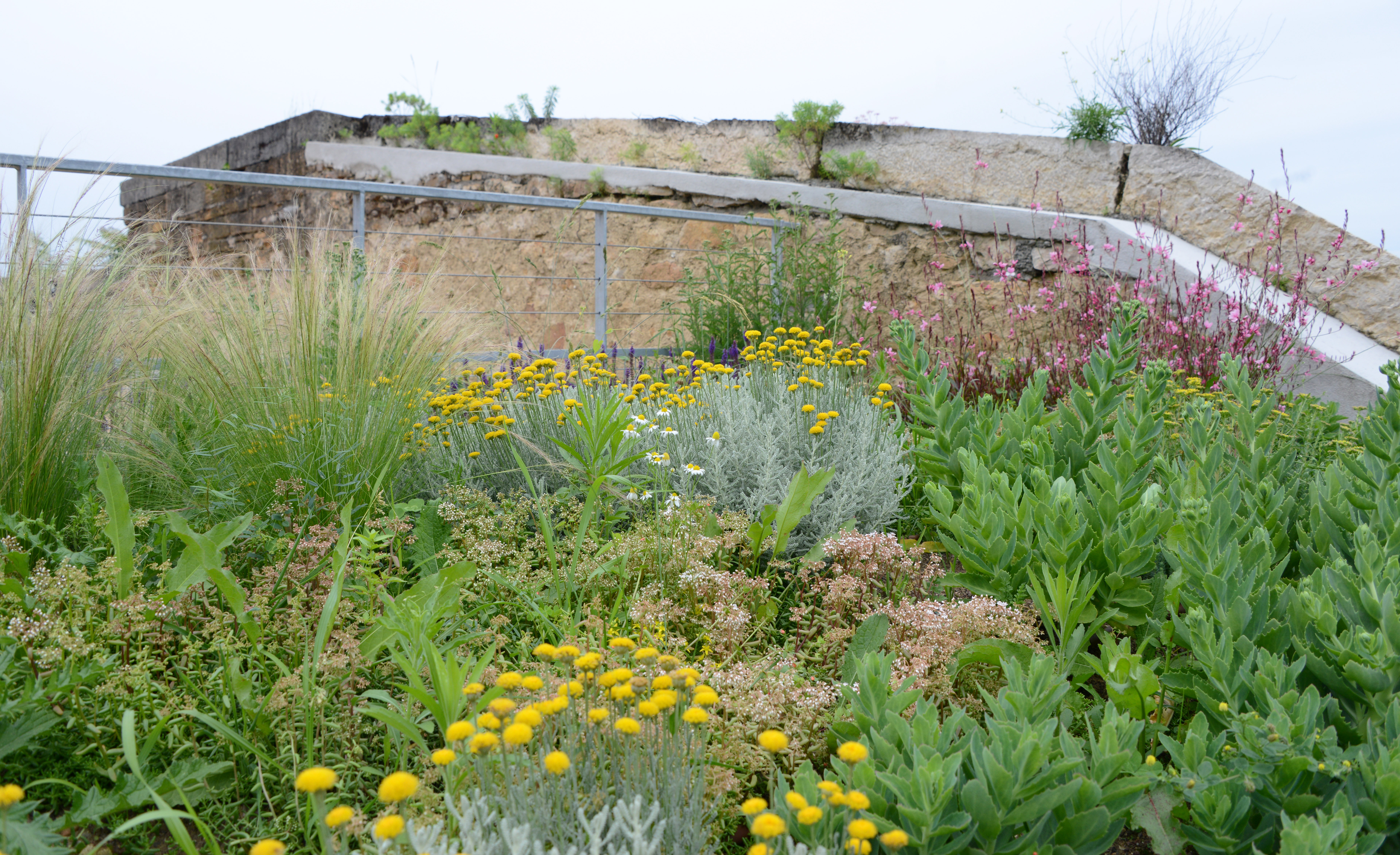 terrasse sud du fort de vaise lyon atlas paysages. Black Bedroom Furniture Sets. Home Design Ideas