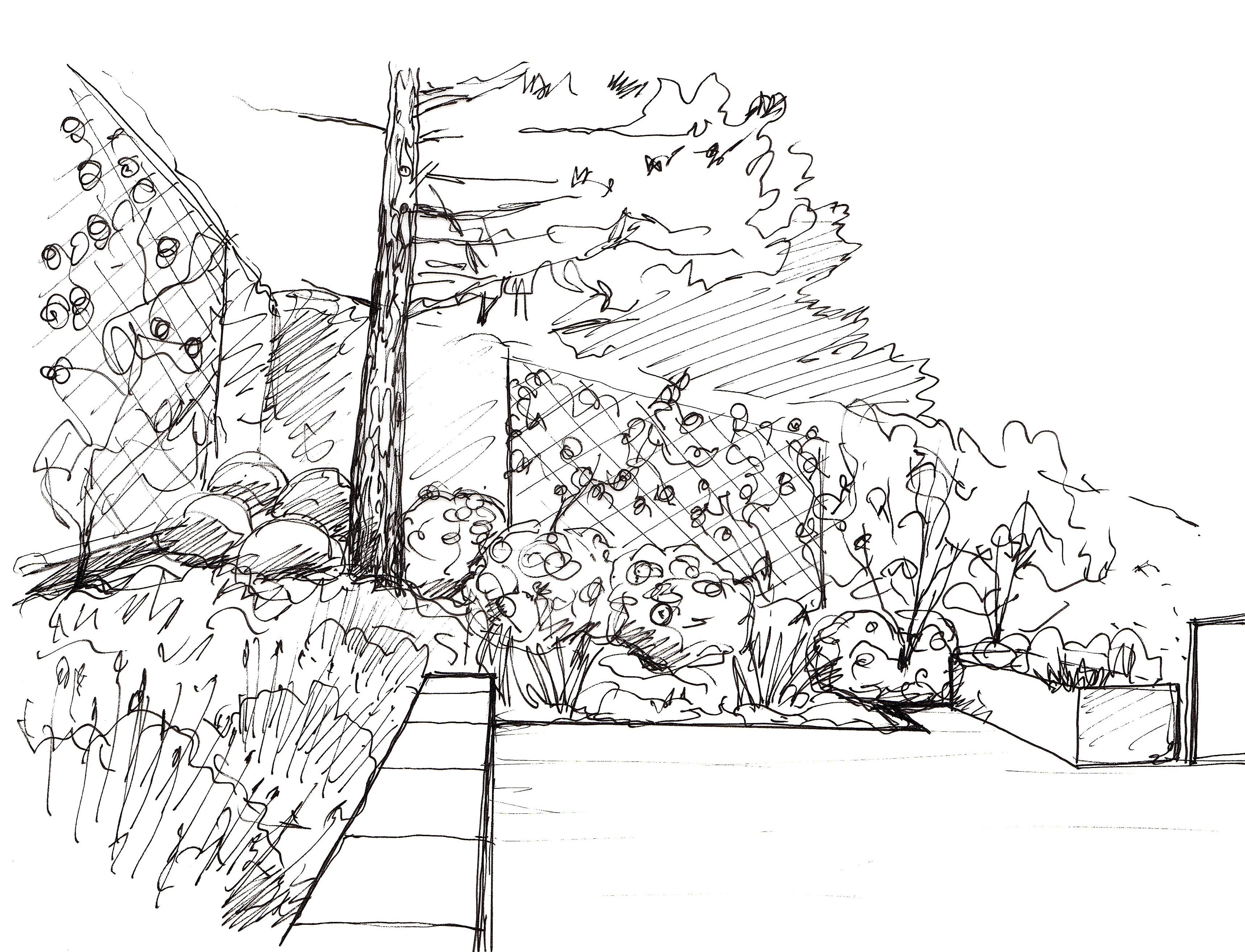 Jardin B. – Saint Cyr au Mt d'Or  Atlas Paysages