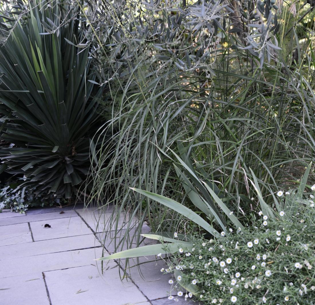 JBL_9763 Atlas paysages - architecte paysagiste Lyon - jardin france