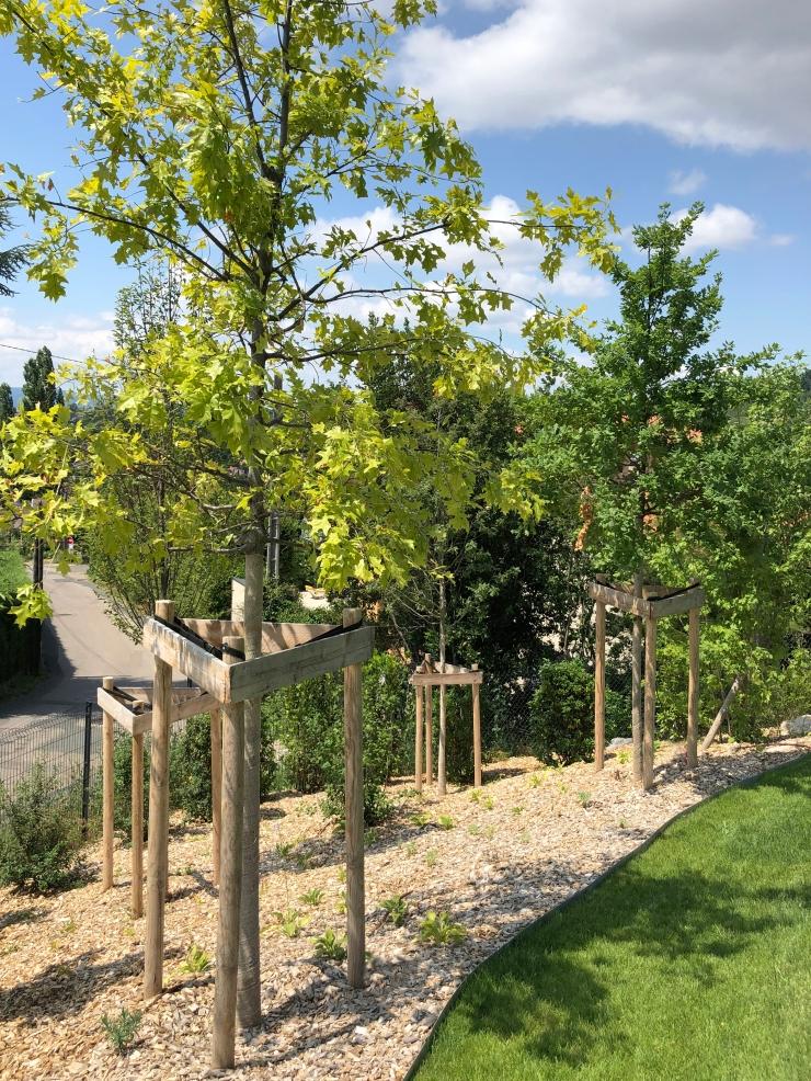 IMG_7389-072019MAS- Jean-Baptiste laine - Atlas paysages - Architecte paysagiste Lyon jardin