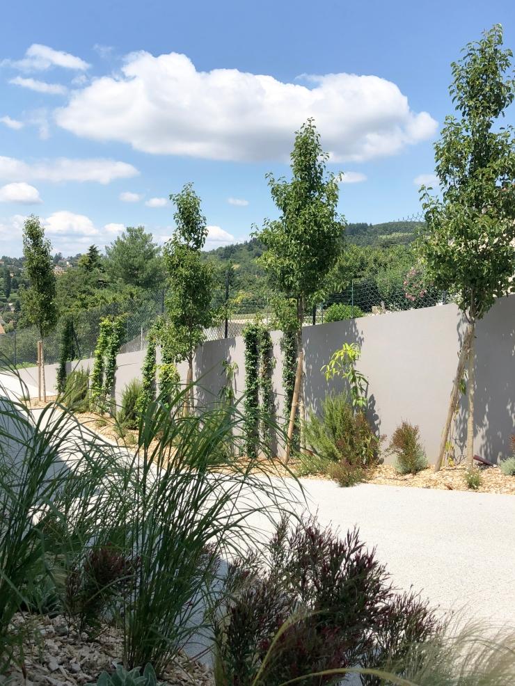 IMG_7434-072019MAS- Jean-Baptiste laine - Atlas paysages - Architecte paysagiste Lyon jardin