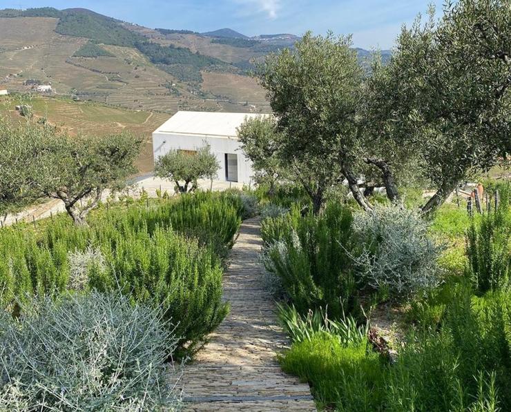 Quinta da corte - Jean-Baptiste laine - Atlas paysages - Architecte paysagiste Lyon jardin 2